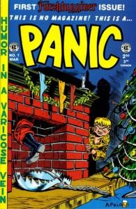 PANIC cover