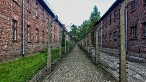 Walkway with old barbed wire and prison barracks on either side