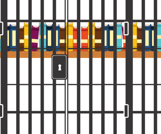 A single packed shelf of books behind the gray bars of a prison cell.
